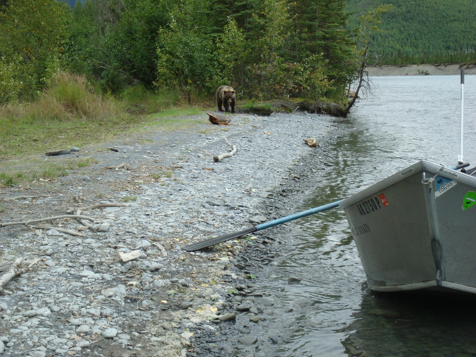 Trout fishing for Fishing company of alaska