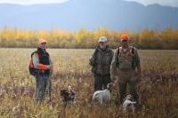 alaska bird hunting