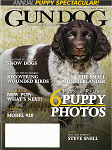 Julson's Dream (as a pup) on the cover of Gun Dog magazine